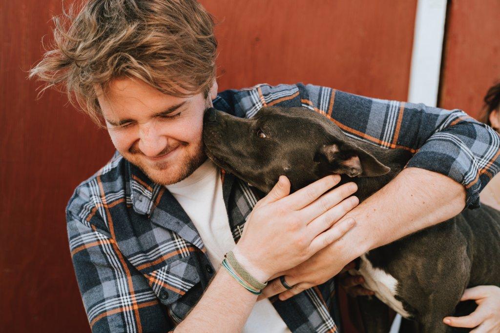 pets friendly 1024x683 - Perks